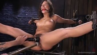 fucked out strange guy immobilizes juicy abella danger and torments her fuzzy cherry
