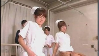 Japanese Scholar Registered nurses Training and Practice