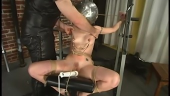 Obliged Carly gets gagged after which toyed in BDSM video