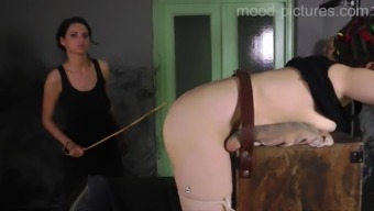 Busy missy has got to murmur even though female friend punishes her ass