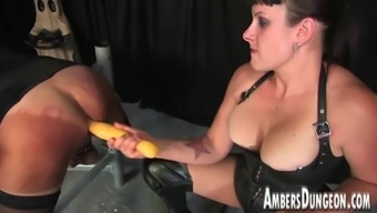 Female friend Lux anus dilling, strap-on and milking of guys pig